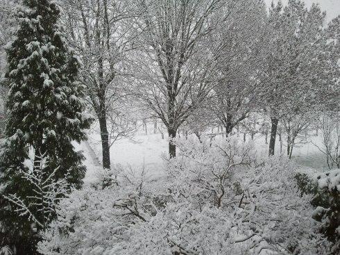 View from the domus surea windows - Foto di TT