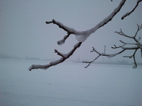 Neve e foschia a Borgo Massenzio - foto di TT