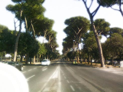 ROMA Viale delle Terme di Caracalla