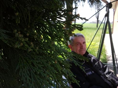 Brian alla domus saurea - foto di TT