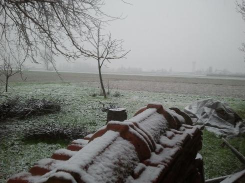 28/01/2014 Borgo Massenzio: prima neve alla Domus saurea - foto di TT