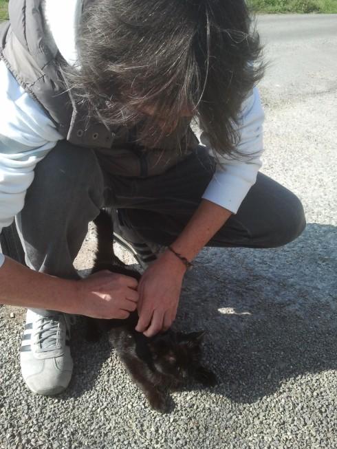 Tim Tirelli e la gattina nera (foto della groupie)