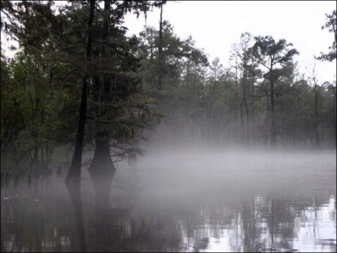 River_Mist_