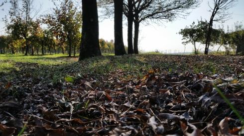 Autumn in Borgo Massenzio (foto di TT)