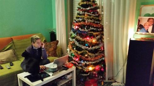 Interno sera: gatto, groupie e Xmas tree - Domus saurea  dic 2014