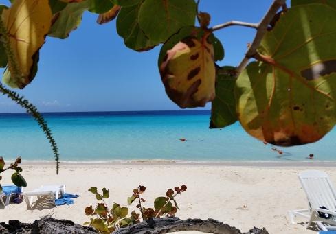 Playa Pesquero Beach (Photo TT)