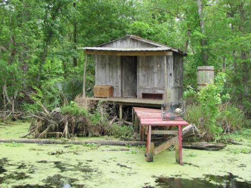Cajun cabin New Orleans bayou
