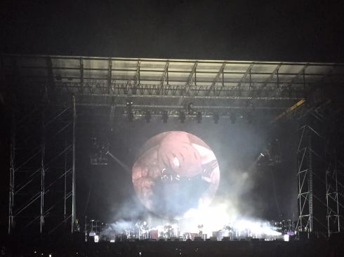 DAVID GILMOUR, Firenze, Ippodromo del Visarno, 15-9-2015 (photo DG facebook page)