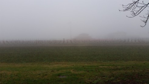 Foggy days at Domus Saurea - foto TT