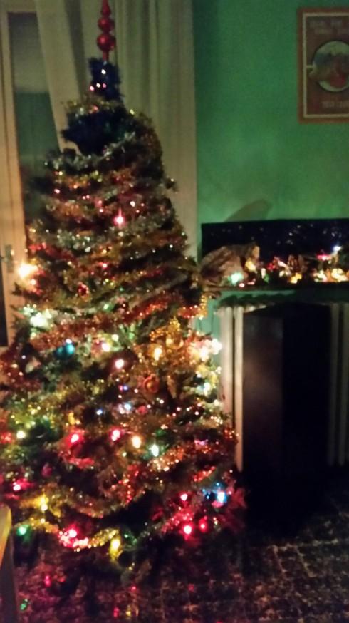 Domus Saurea - dicembre 2015 - foto TT