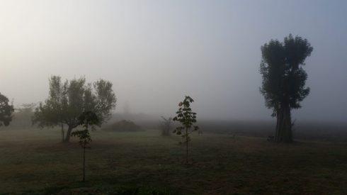 Foggy day at Domus Saurea - ottobre 2016 - foto TT
