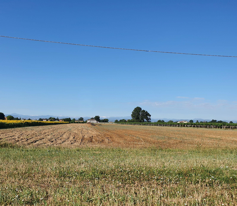 Osteriola countryside d - Luglio 2021 - Foto TT